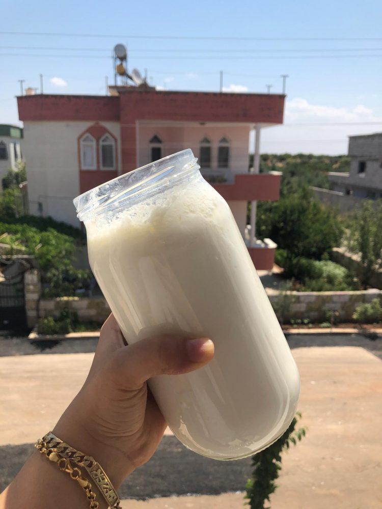 ek-gida-yogurt